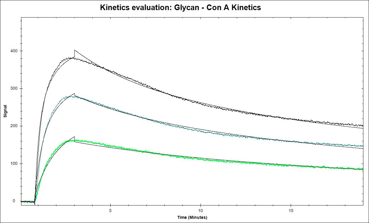 carbohydrate binding kinetics using surface plasmon resonance