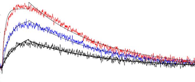 cd16a fc receptor binding kinetics using surface plasmon resonance