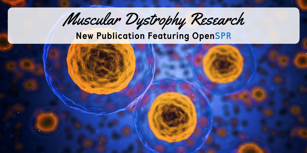 New Publication – SPR binding data advances muscular dystrophy research