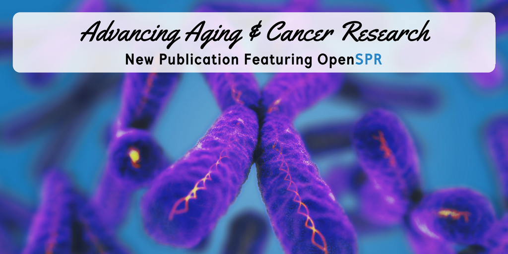 New Publication – OpenSPR binding data helps advance aging & cancer research