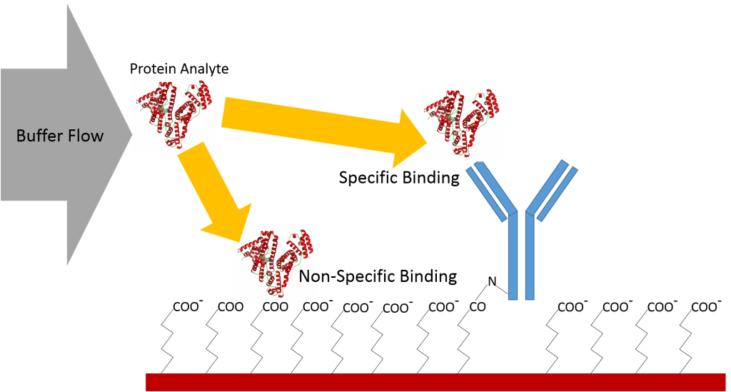 non-specific binding vs specific binding protein analyte